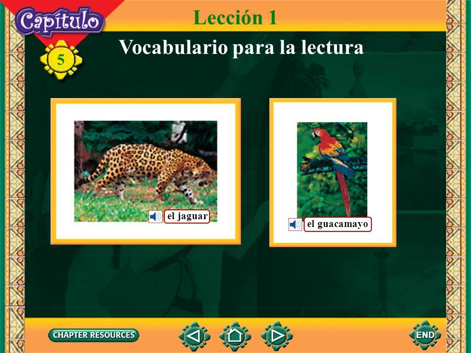 Vocabulario para la lectura