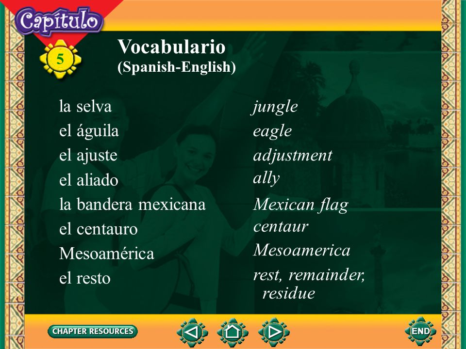 Vocabulario la selva jungle el águila eagle el ajuste adjustment