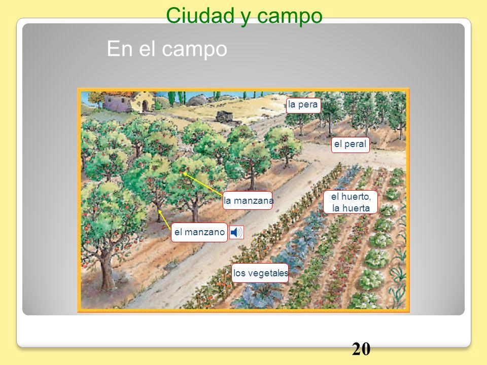 Ciudad y campo En el campo 20 la pera el peral el huerto, la manzana