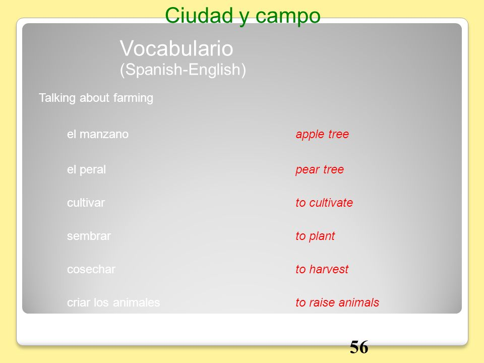 Ciudad y campo Vocabulario 56 (Spanish-English) Talking about farming