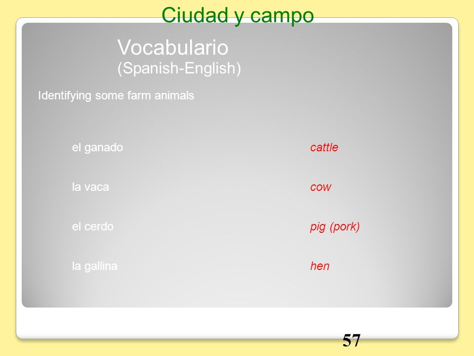 Ciudad y campo Vocabulario 57 (Spanish-English)