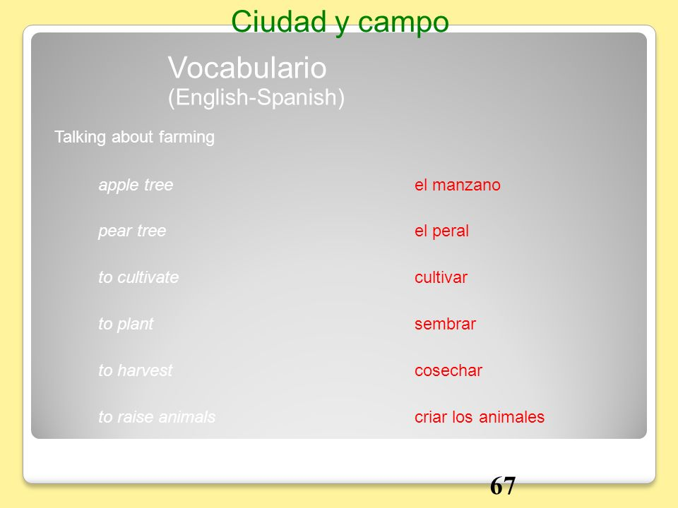 Ciudad y campo Vocabulario 67 (English-Spanish) Talking about farming