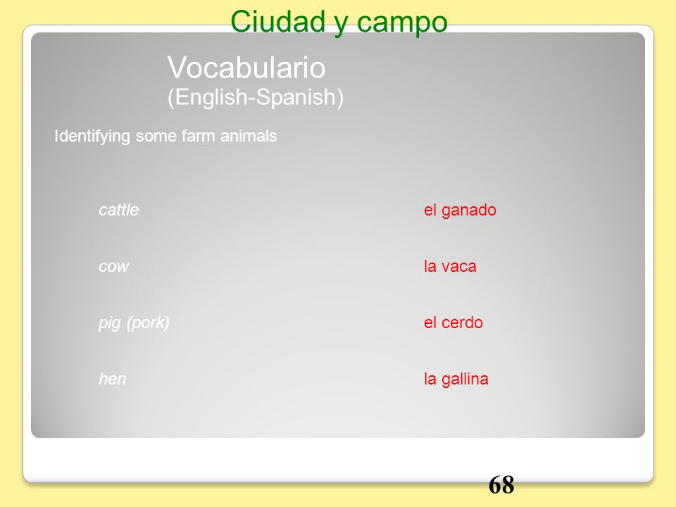 Ciudad y campo Vocabulario 68 (English-Spanish)