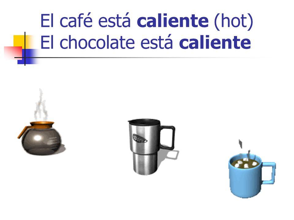 El café está caliente (hot) El chocolate está caliente