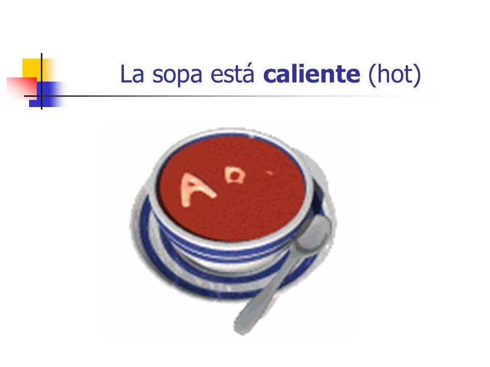 La sopa está caliente (hot)