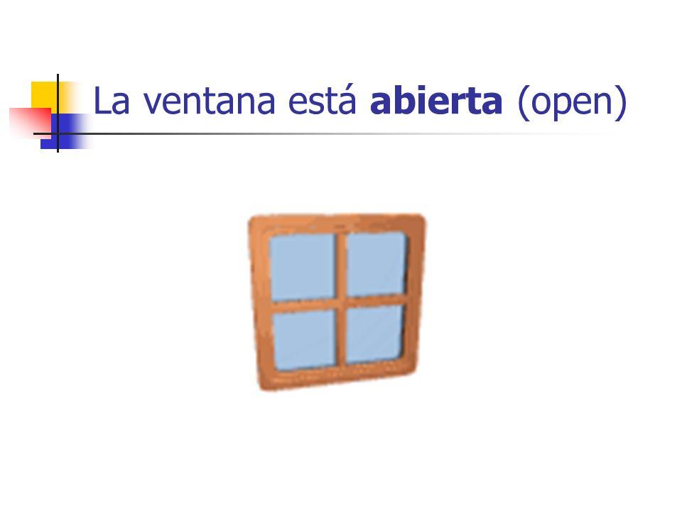 La ventana está abierta (open)