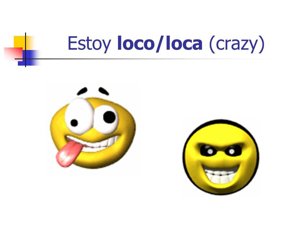 Estoy loco/loca (crazy)