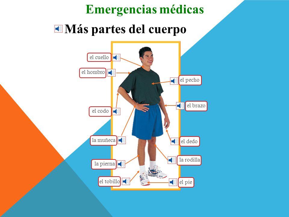 Emergencias médicas Más partes del cuerpo el cuello el hombro el pecho