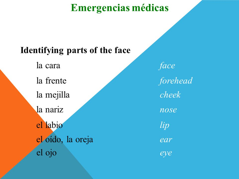 Emergencias médicas Vocabulario Identifying parts of the face la cara