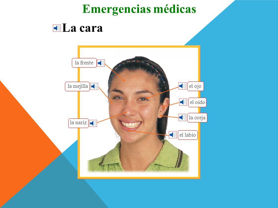 Emergencias médicas La cara la frente la mejilla el ojo el oído