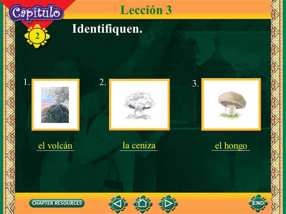 Lección 3 Identifiquen. 1. ________ ________ 2. ________ 3. el volcán