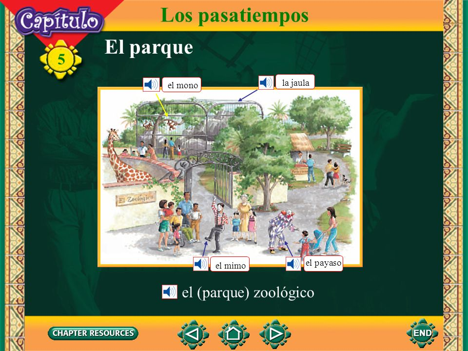 Los pasatiempos El parque el (parque) zoológico la jaula el mono
