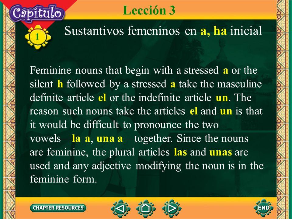 Sustantivos femeninos en a, ha inicial
