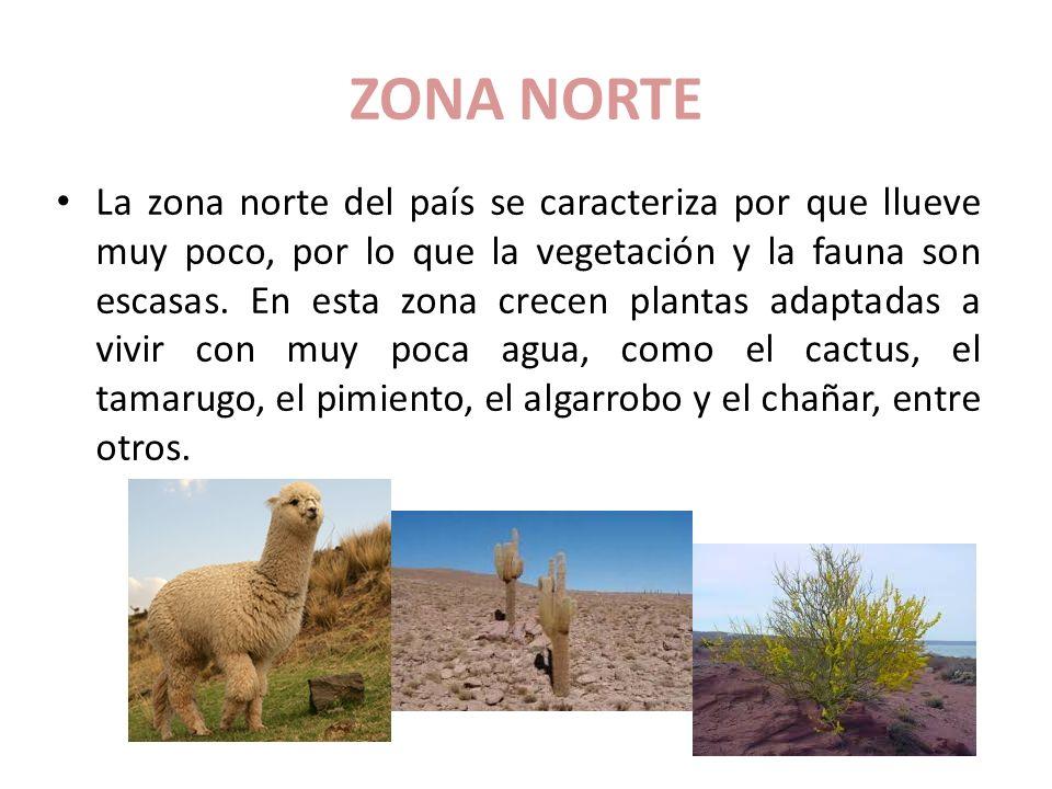 Las zonas naturales de chile ppt video online descargar for Marmoles y granitos zona norte