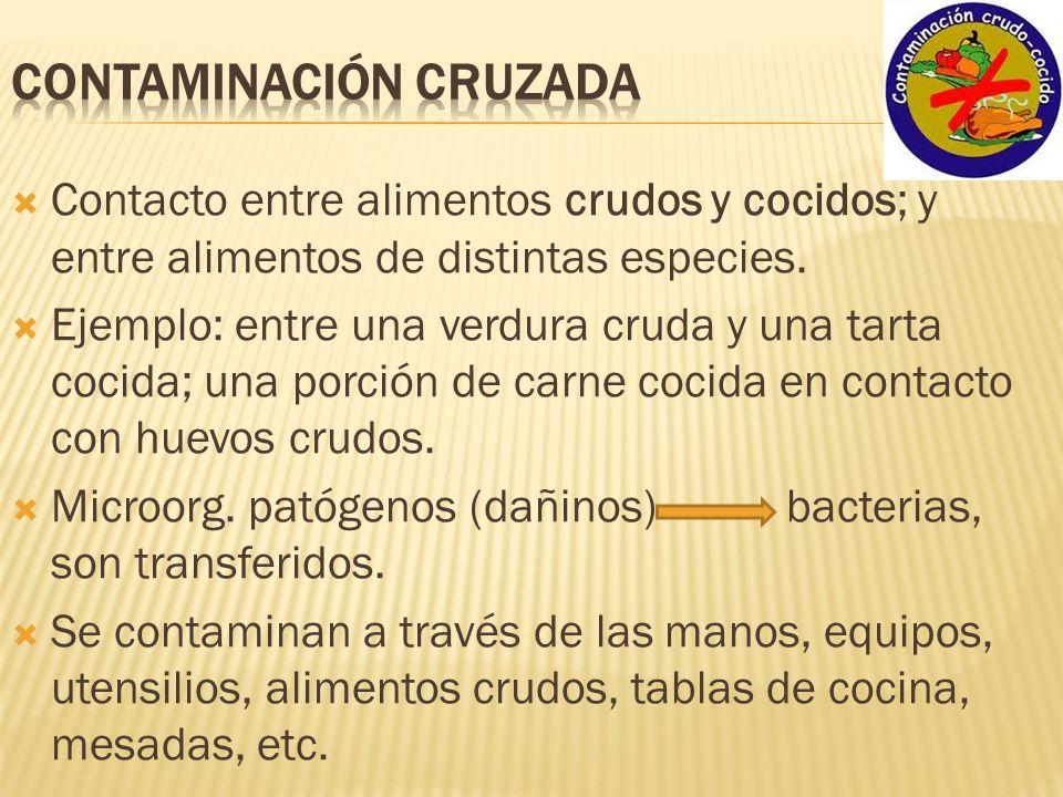 Curso manipulaci n de alimentos ppt video online descargar - Carne manipulacion de alimentos ...