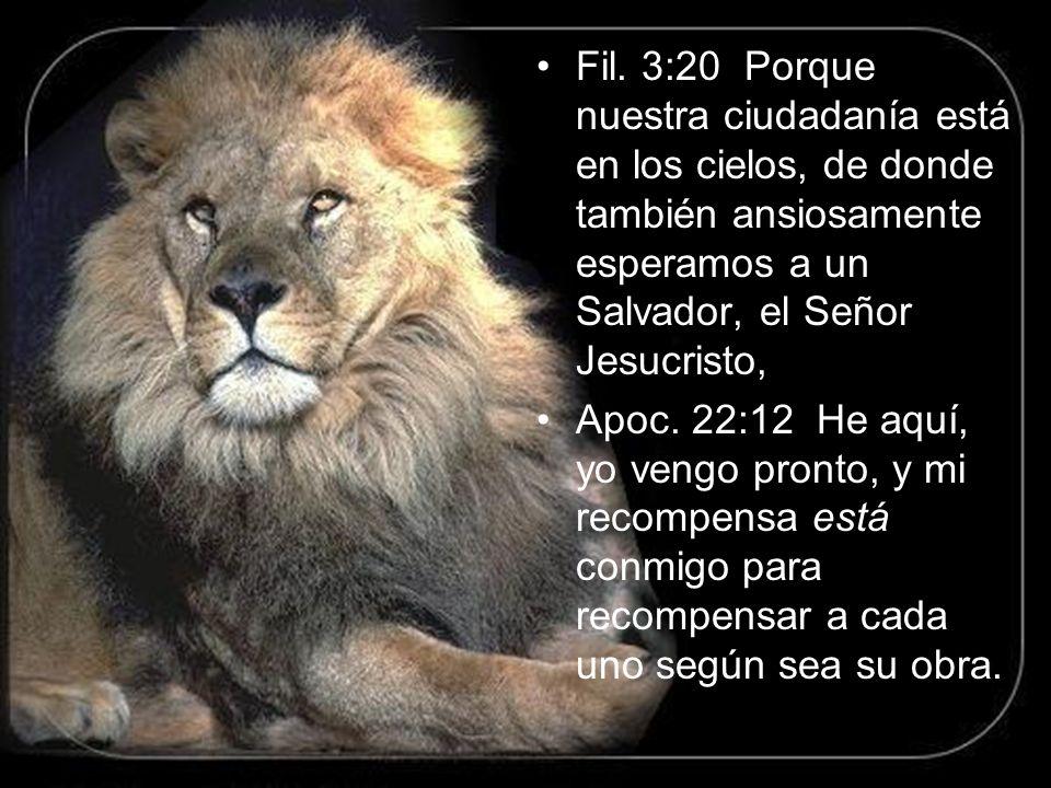 Fil. 3:20 Porque nuestra ciudadanía está en los cielos, de donde también ansiosamente esperamos a un Salvador, el Señor Jesucristo,
