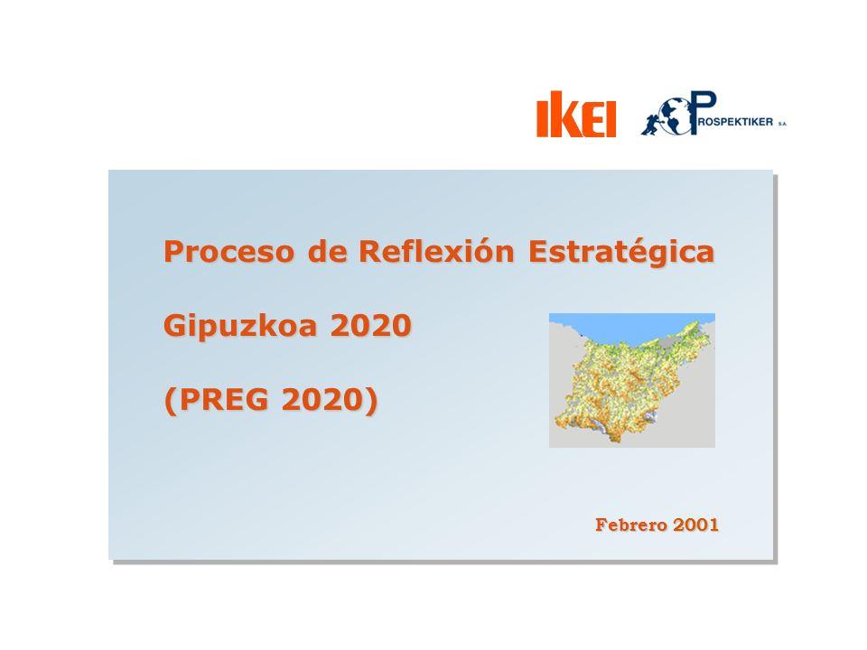Proceso de Reflexión Estratégica Gipuzkoa 2020 (PREG 2020)