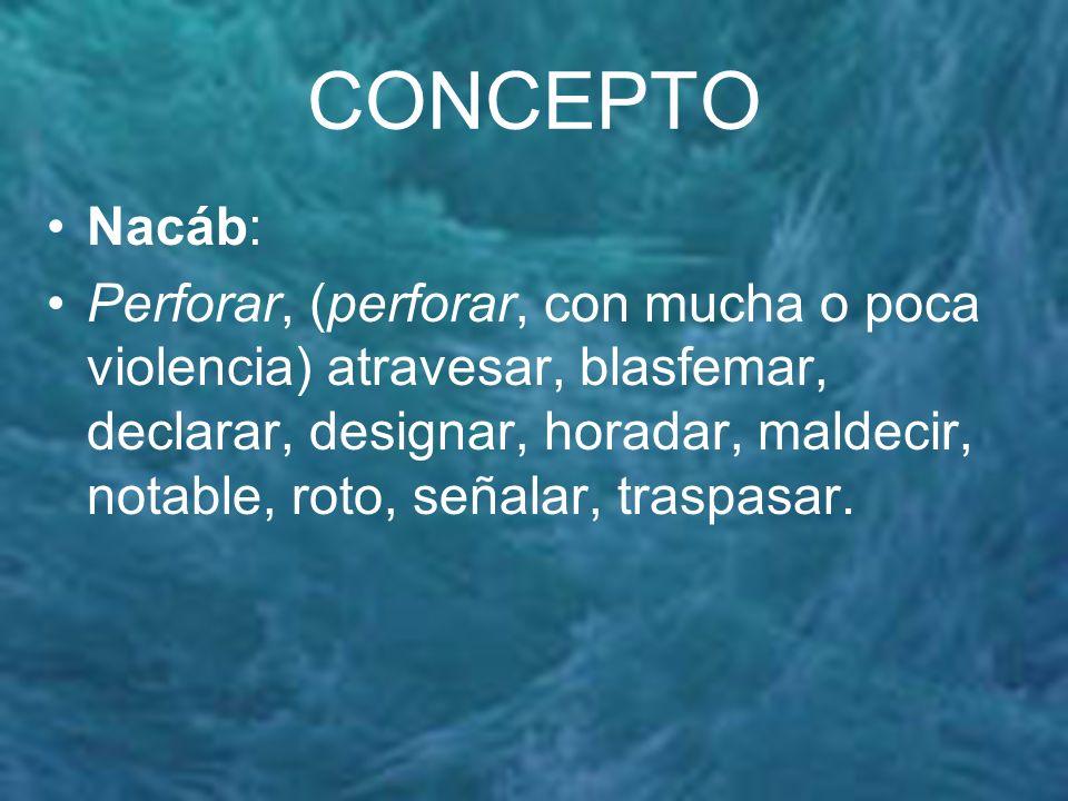 CONCEPTO Nacáb: