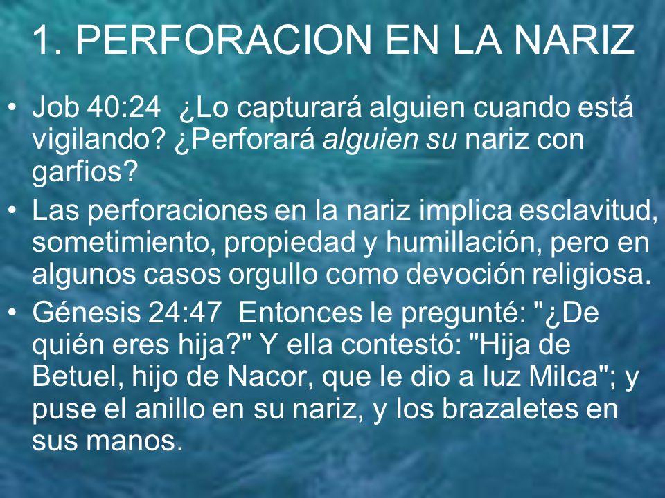 1. PERFORACION EN LA NARIZ