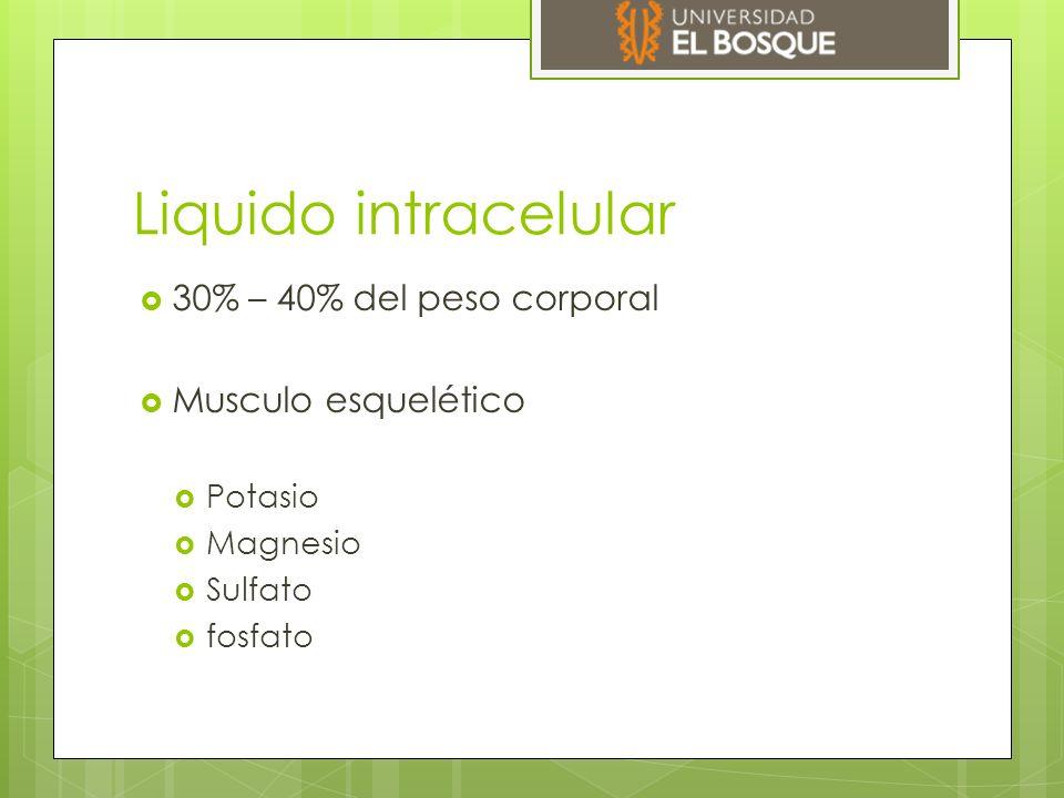 Liquido intracelular 30% – 40% del peso corporal Musculo esquelético
