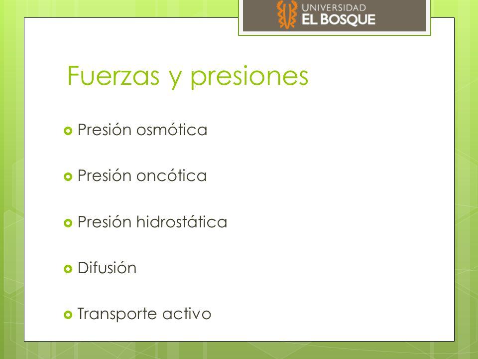 Fuerzas y presiones Presión osmótica Presión oncótica