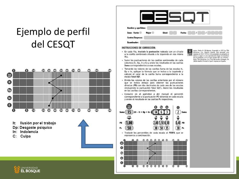 Ejemplo de perfil del CESQT