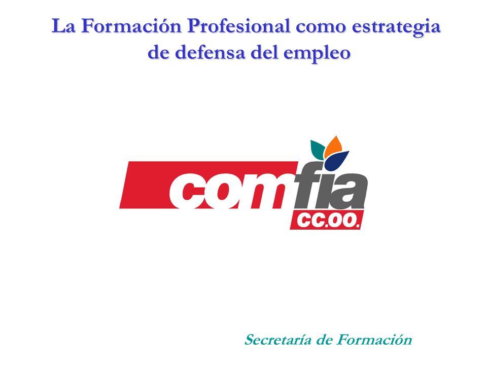 La Formación Profesional como estrategia
