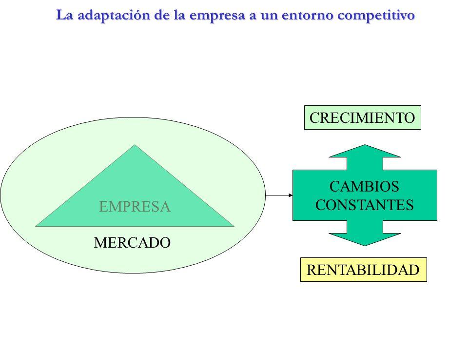 La adaptación de la empresa a un entorno competitivo