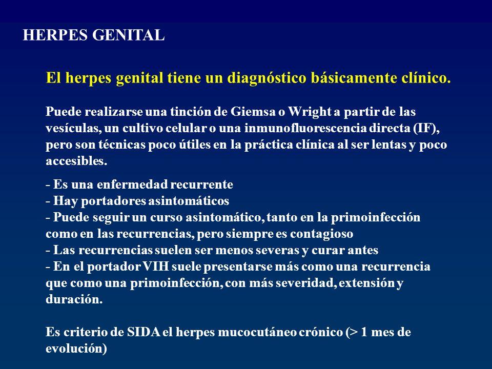El herpes genital tiene un diagnóstico básicamente clínico.