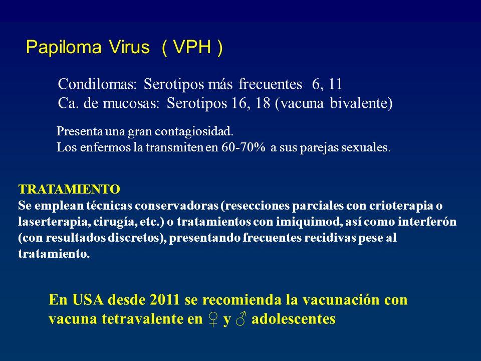 Papiloma Virus ( VPH ) Condilomas: Serotipos más frecuentes 6, 11