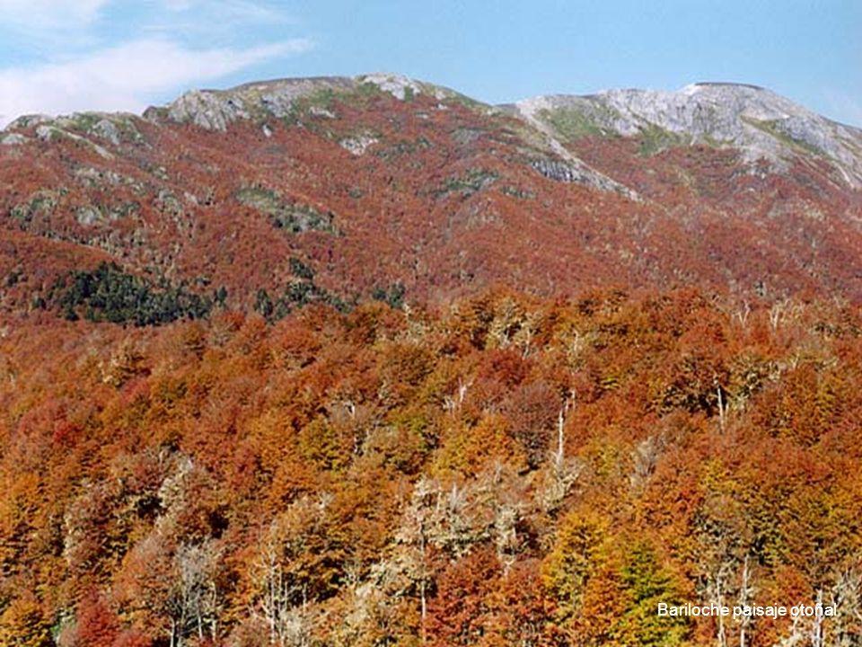 Bariloche paisaje otoñal