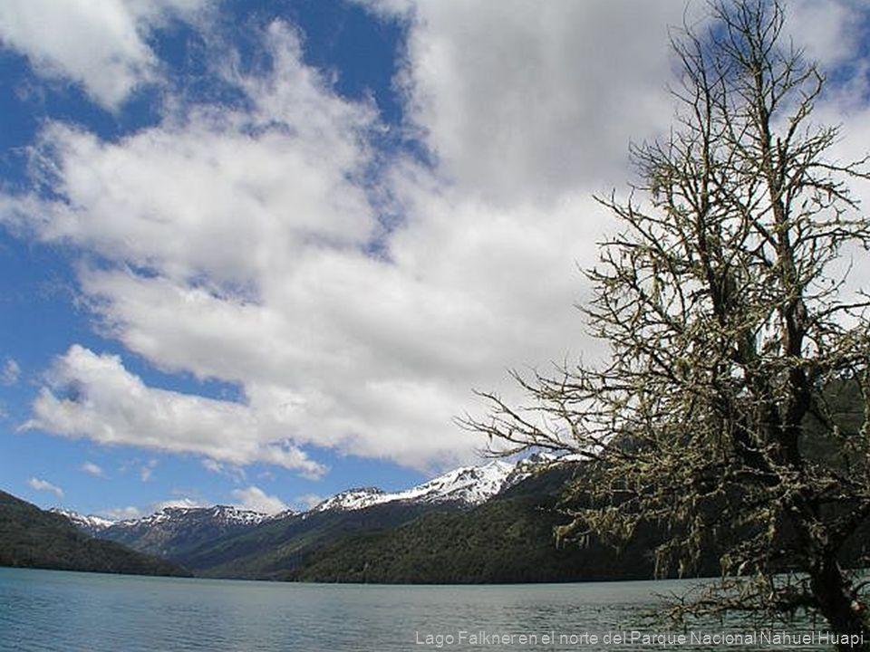 Lago Falkner en el norte del Parque Nacional Nahuel Huapi