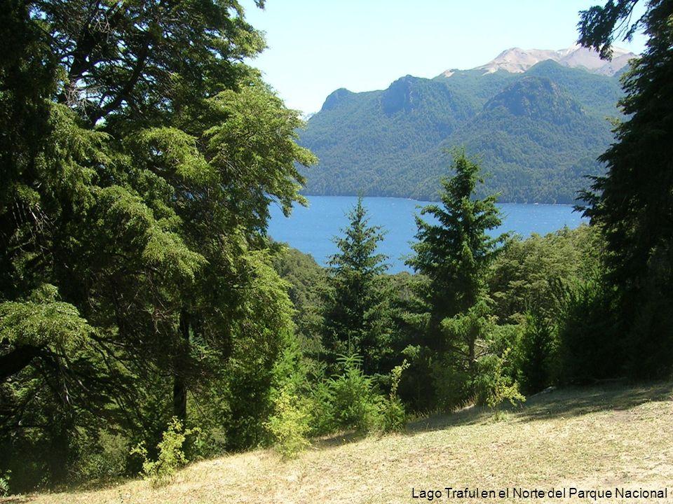 Lago Traful en el Norte del Parque Nacional