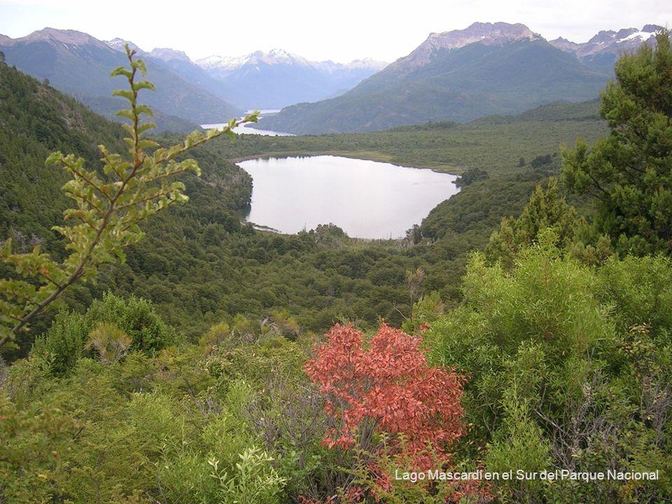 Lago Mascardi en el Sur del Parque Nacional