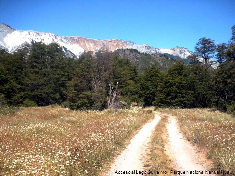 Acceso al Lago Guillelmo Parque Nacional Nahuel Huapi