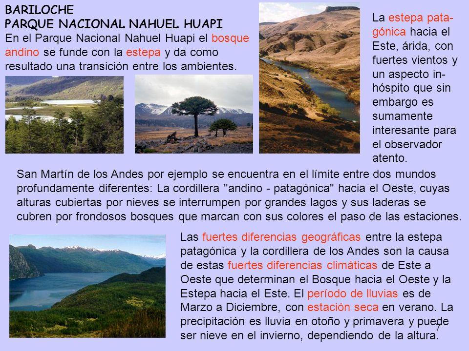 BARILOCHE PARQUE NACIONAL NAHUEL HUAPI En el Parque Nacional Nahuel Huapi el bosque