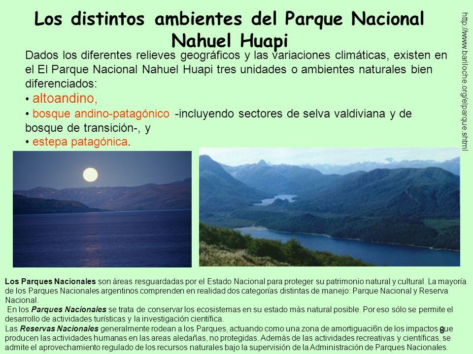 Los distintos ambientes del Parque Nacional Nahuel Huapi