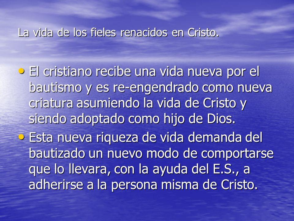 La vida de los fieles renacidos en Cristo.