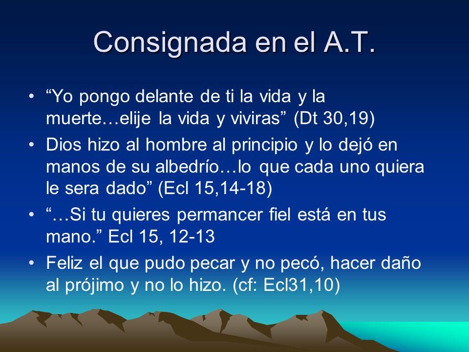 Consignada en el A.T. Yo pongo delante de ti la vida y la muerte…elije la vida y viviras (Dt 30,19)