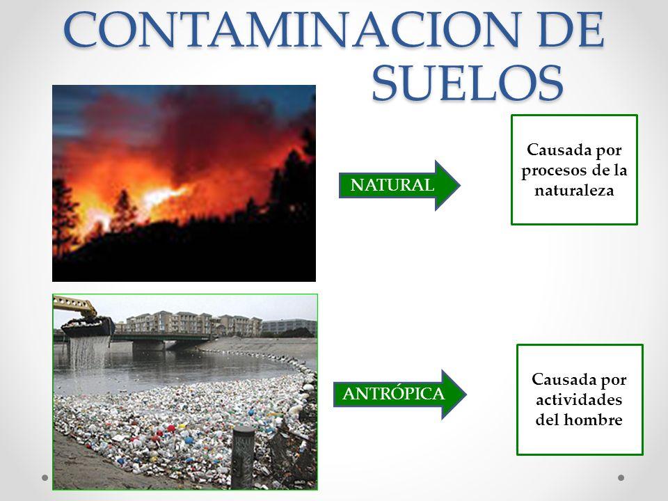 Medio ambiente medio ambiente contaminaci n l nea de for Hipotecas afectadas por el suelo