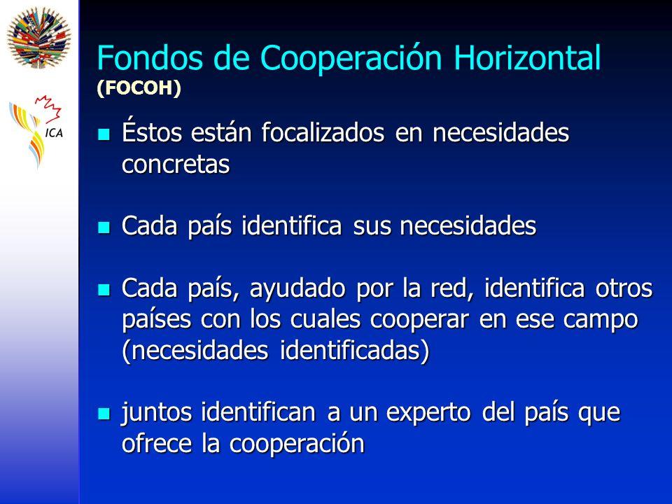 Fondos de Cooperación Horizontal (FOCOH)