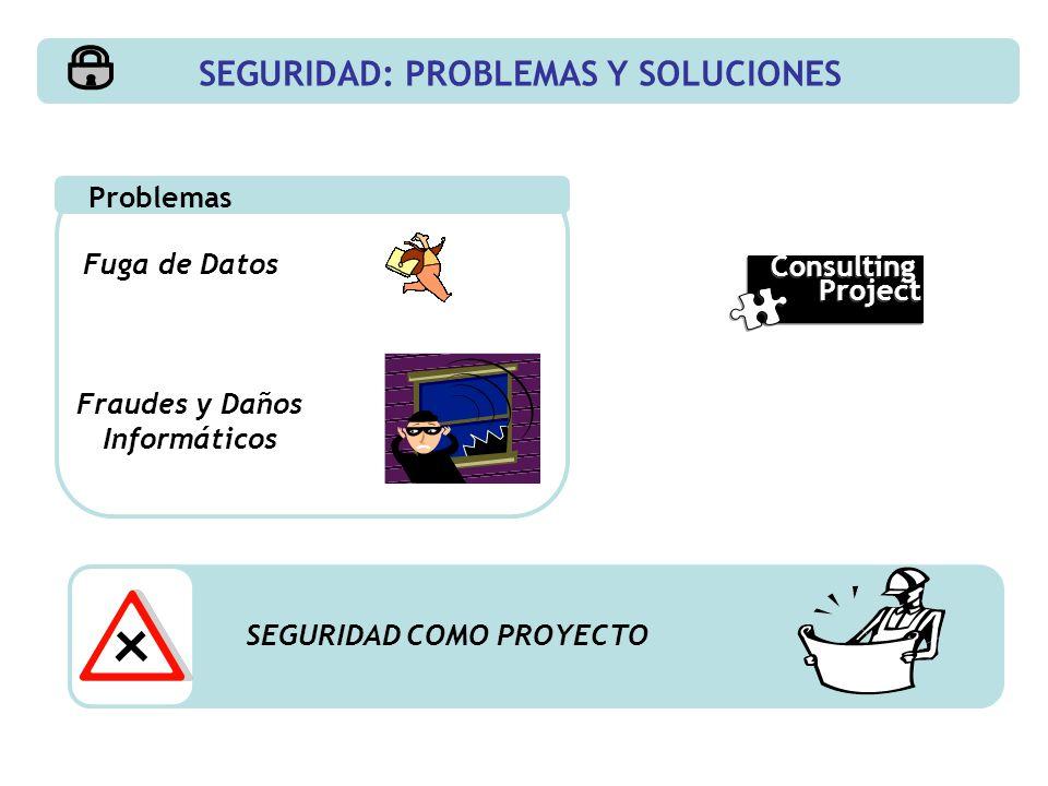 SEGURIDAD: PROBLEMAS Y SOLUCIONES Fraudes y Daños Informáticos