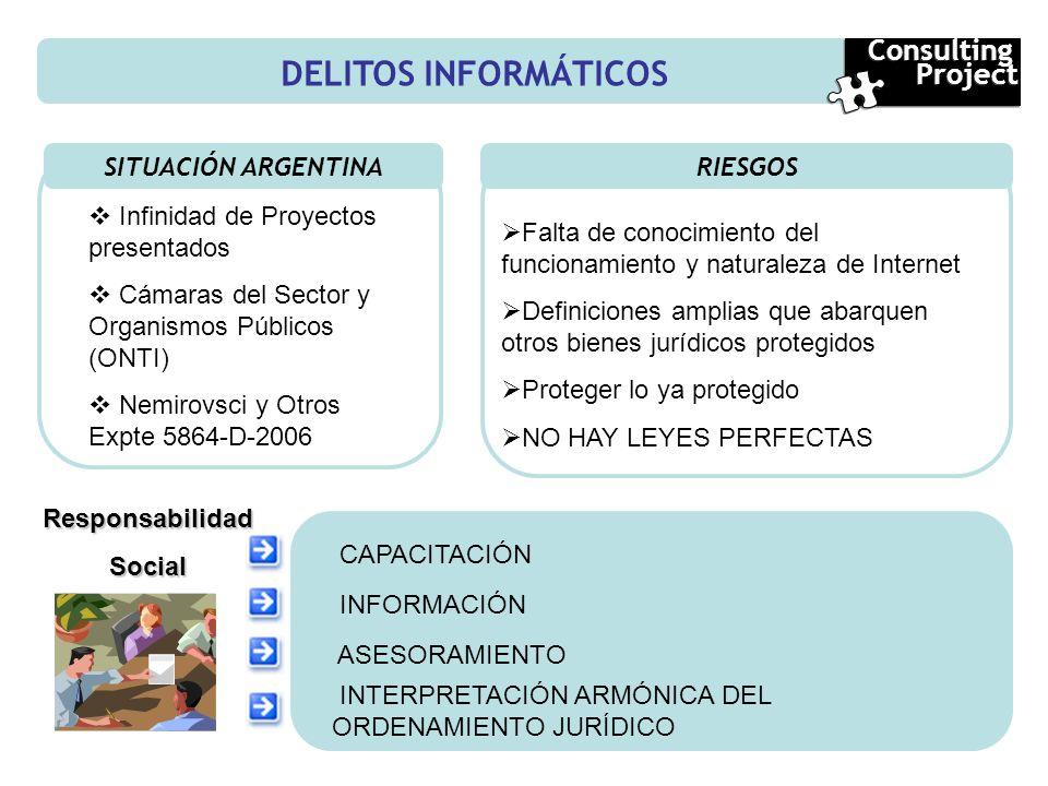 DELITOS INFORMÁTICOS Consulting Project SITUACIÓN ARGENTINA RIESGOS