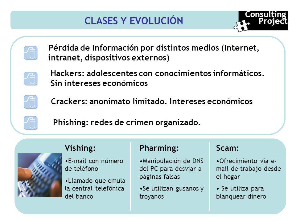 CLASES Y EVOLUCIÓN Consulting Project
