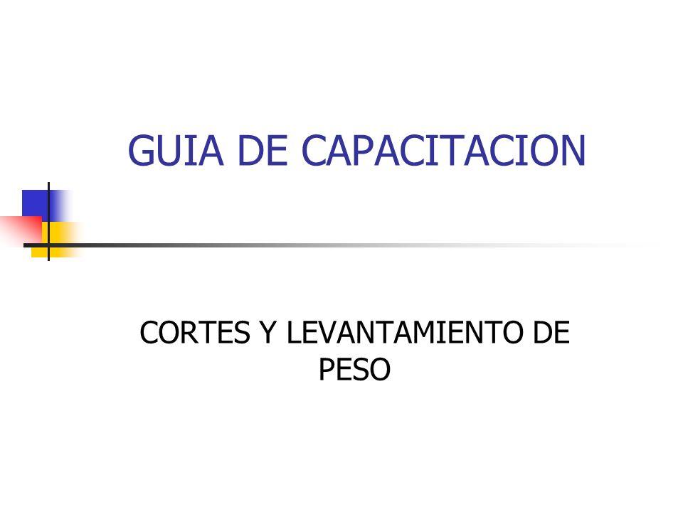 CORTES Y LEVANTAMIENTO DE PESO