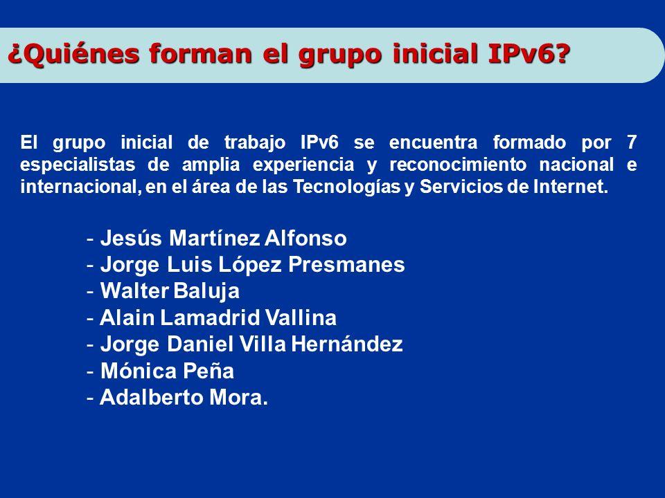 ¿Quiénes forman el grupo inicial IPv6