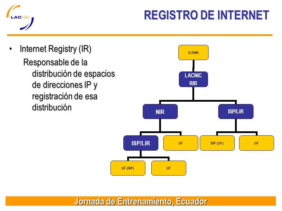 REGISTRO DE INTERNET Internet Registry (IR)