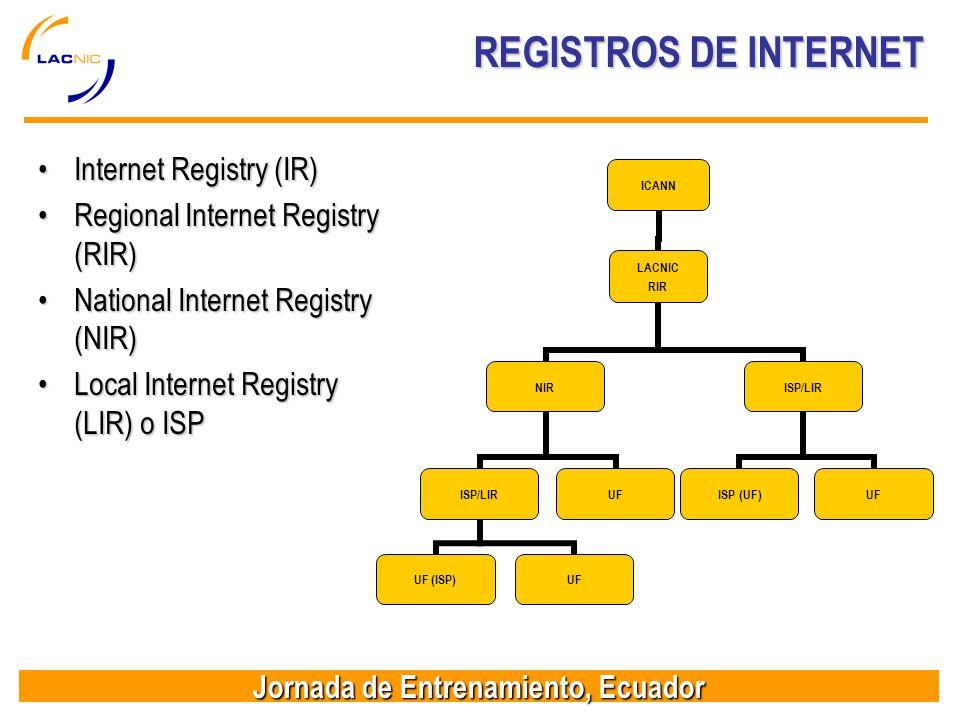 REGISTROS DE INTERNET Internet Registry (IR)