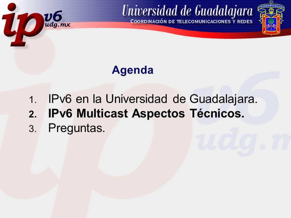 IPv6 en la Universidad de Guadalajara.