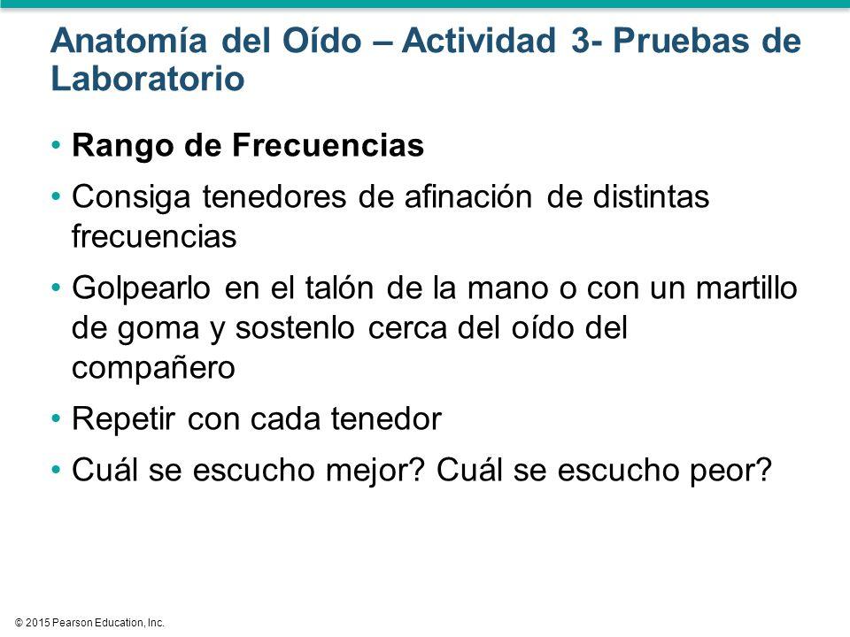 Lujoso Anatomía Y Fisiología De Prueba Respuestas Regalo - Imágenes ...
